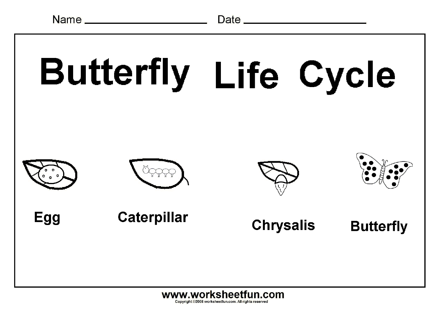 Butterfly Life Cycle – One Worksheet / FREE Printable Worksheets ...